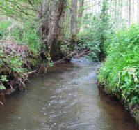 B3-9 ruisseau quincampoix